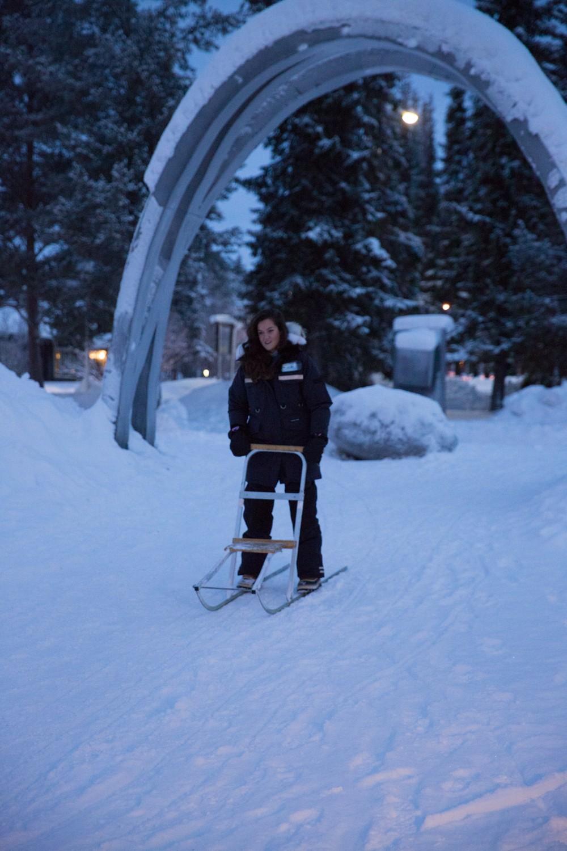 Husky Sledding Lapland-10