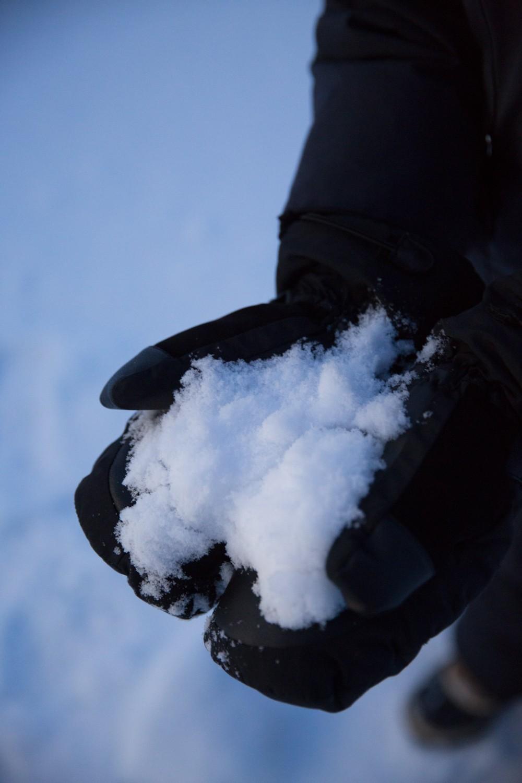 Husky Sledding Lapland-15