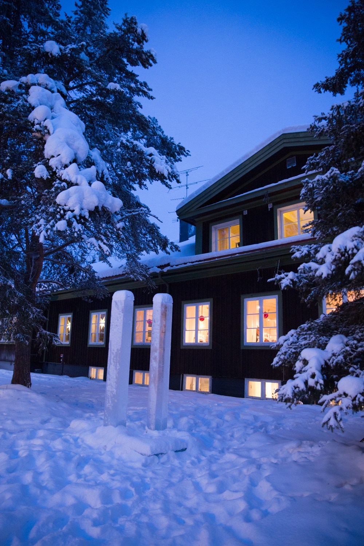 Husky Sledding Lapland-2