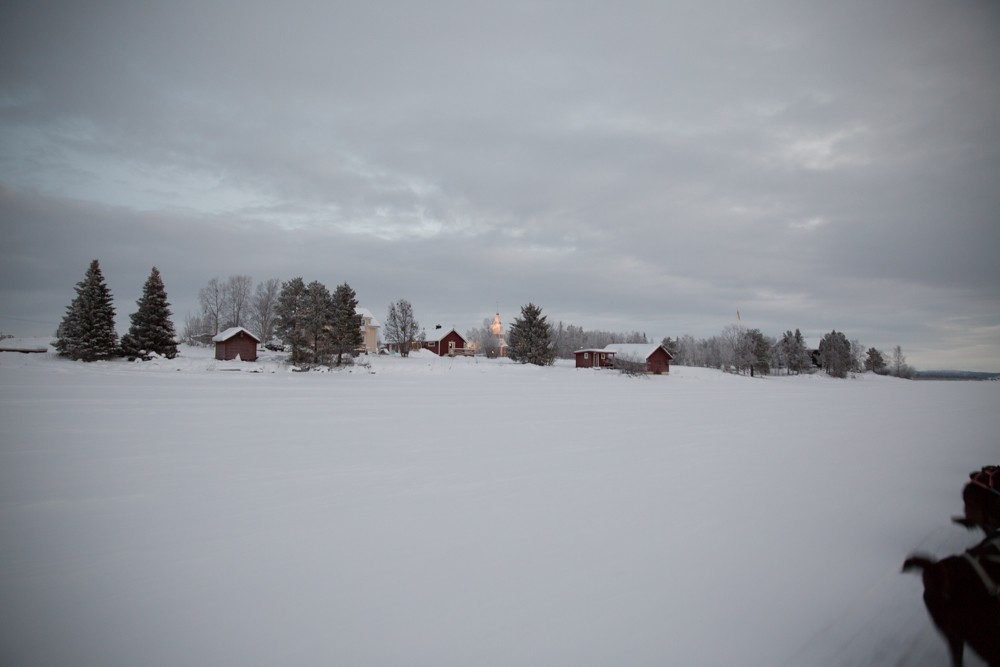 Husky Sledding Lapland-22