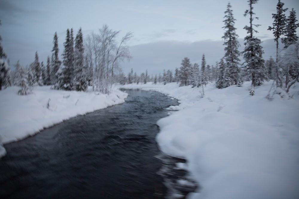 Husky Sledding Lapland-30