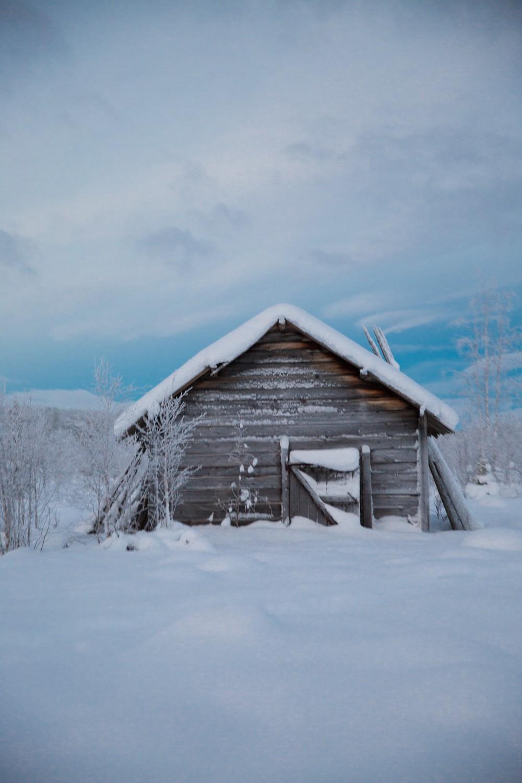 Husky Sledding Lapland-32
