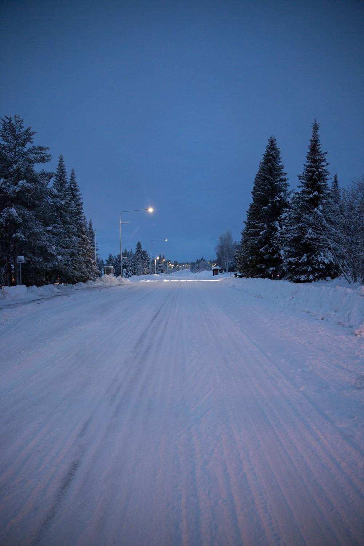 Husky Sledding Lapland-4