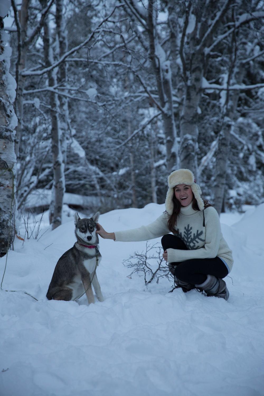 Husky Sledding Lapland-70