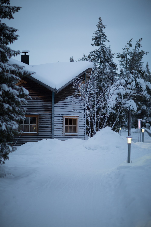 Husky Sledding Lapland-73