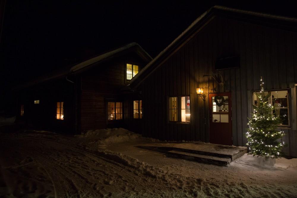 Husky Sledding Lapland-83