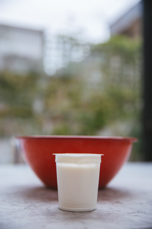 French Yogurt Cake-3