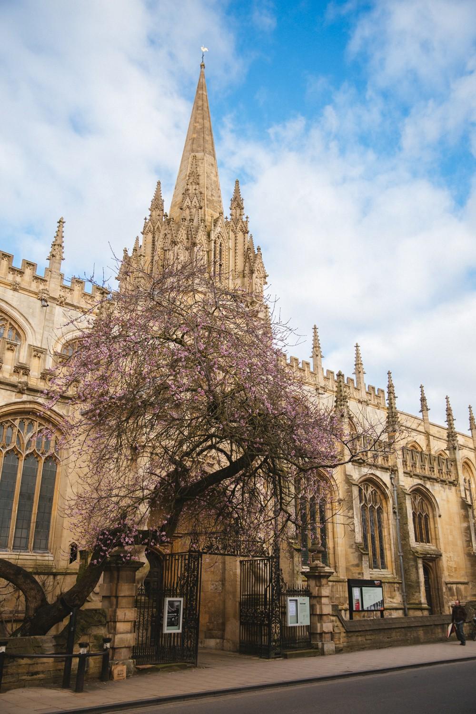 Oxford Blog -19