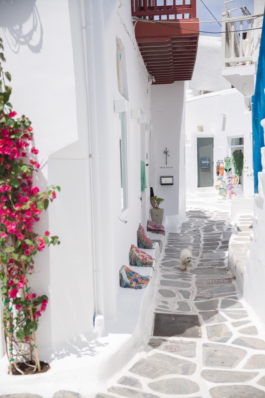 Mykonos Greece-49