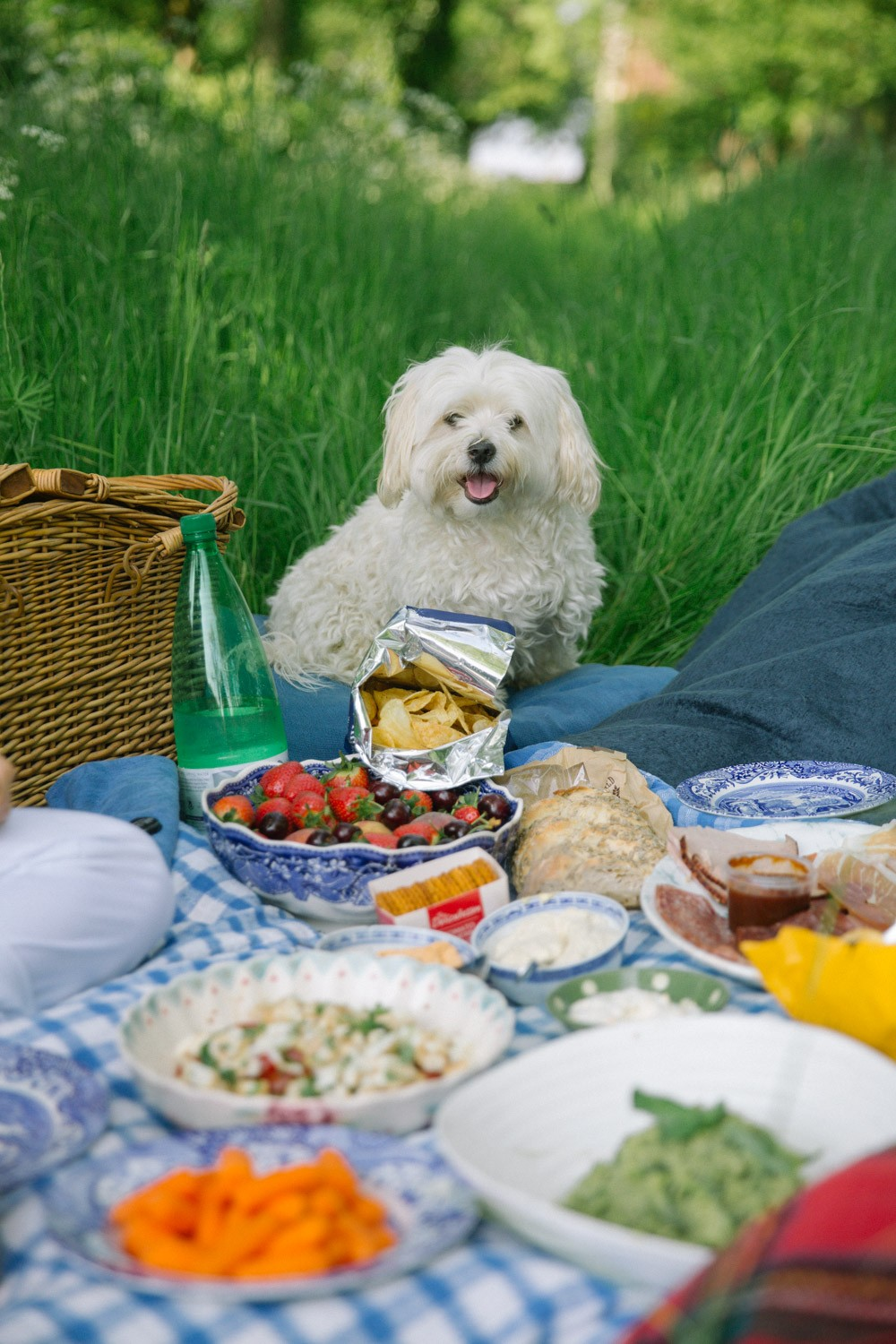 A Picnic For Two -7
