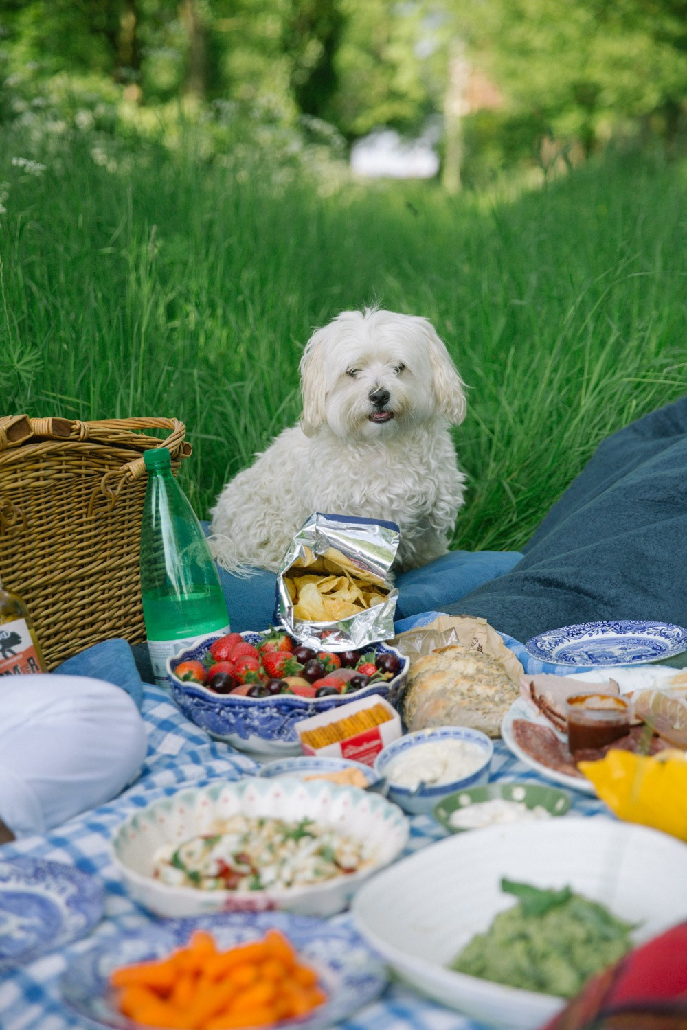 A Picnic For Two -8