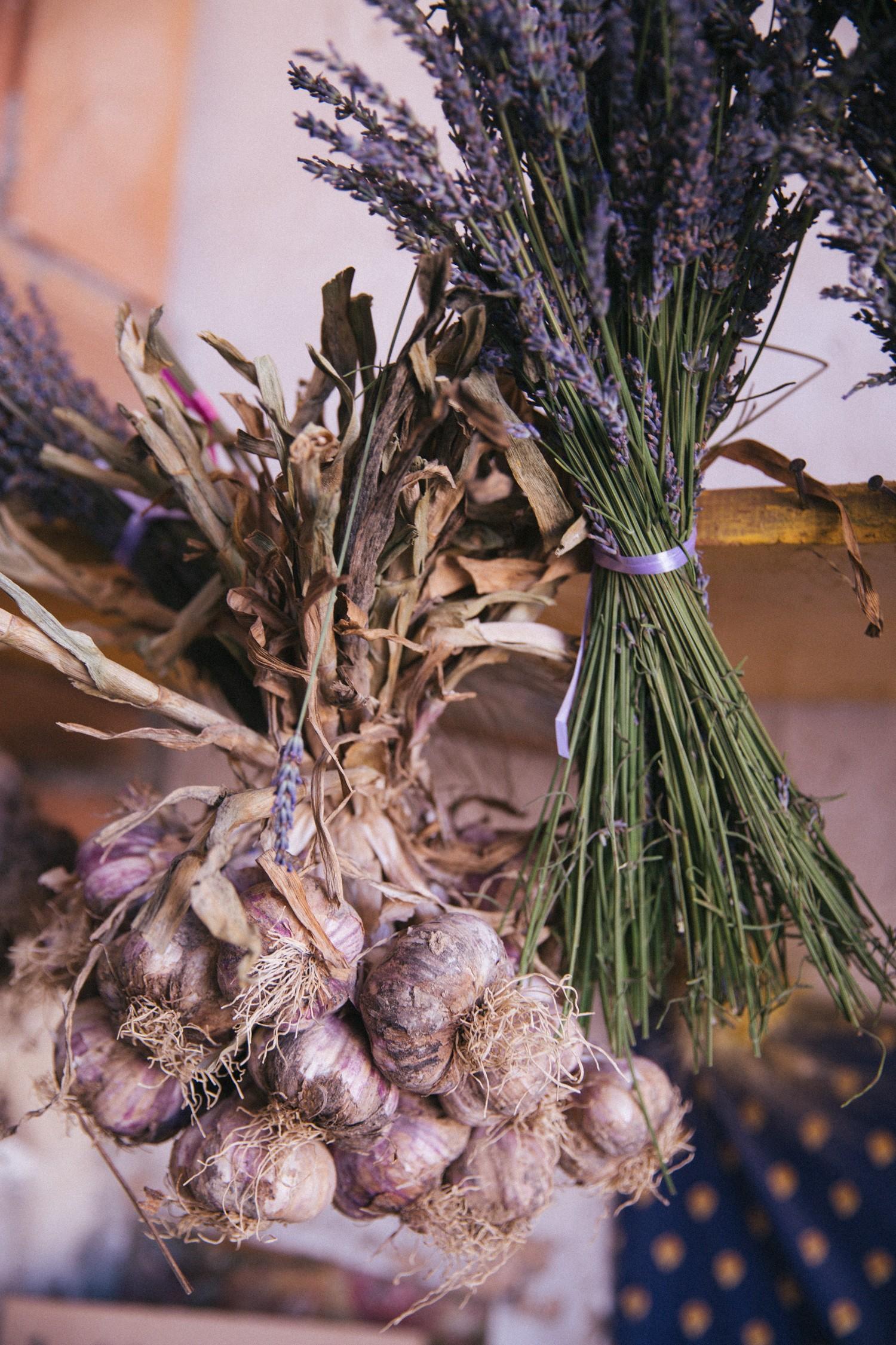 Lavender in Provence-15