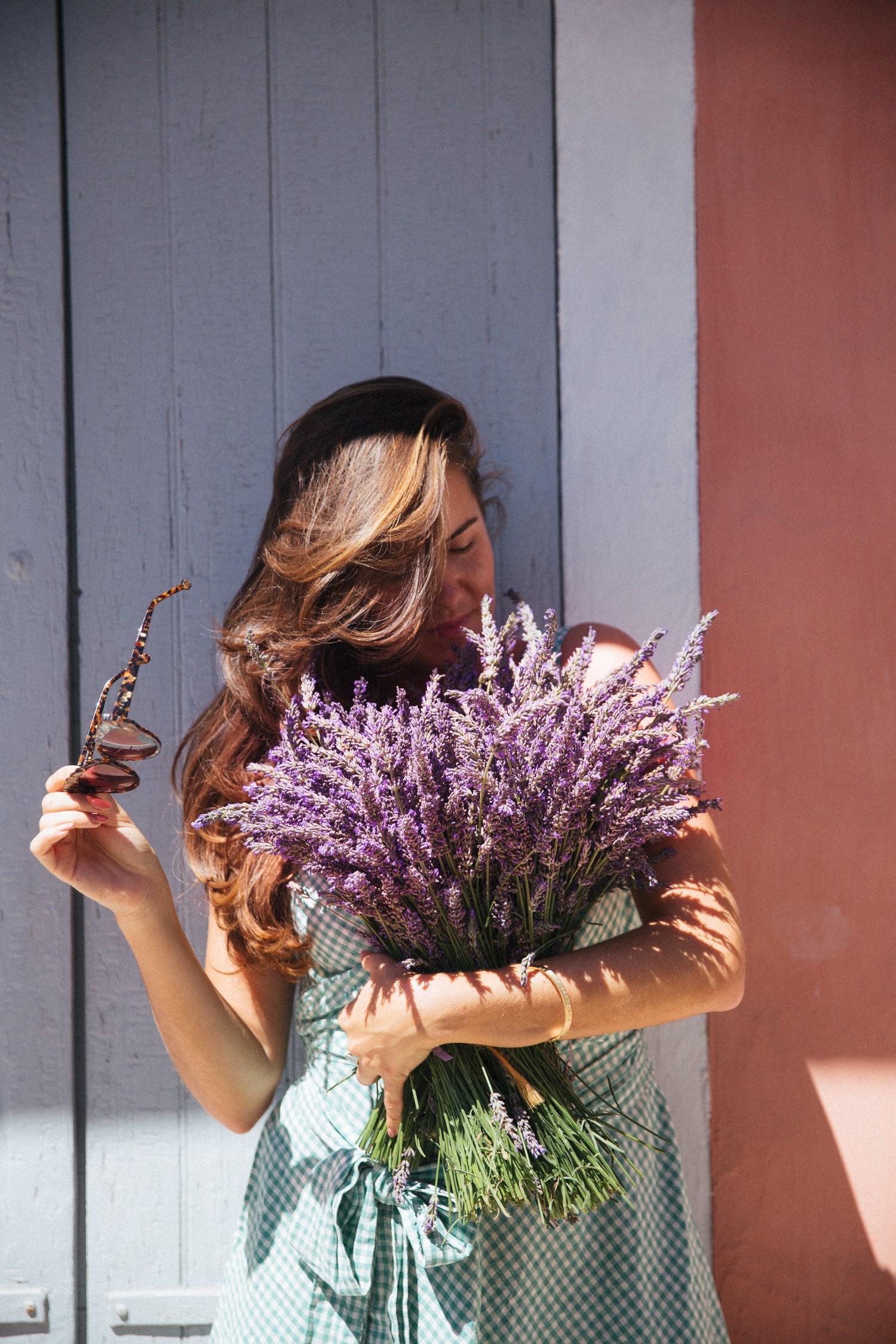 Lavender in Provence-17