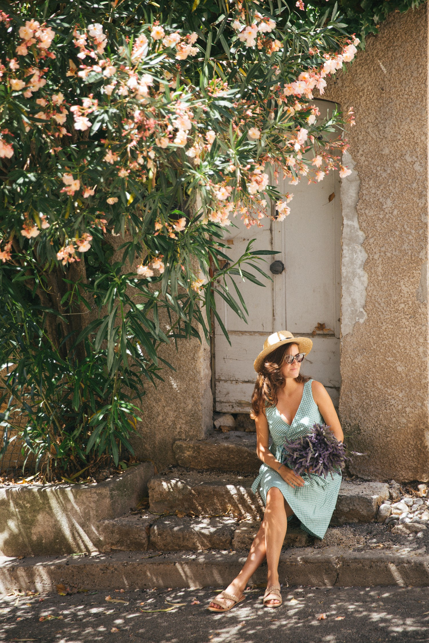 Lavender in Provence-20