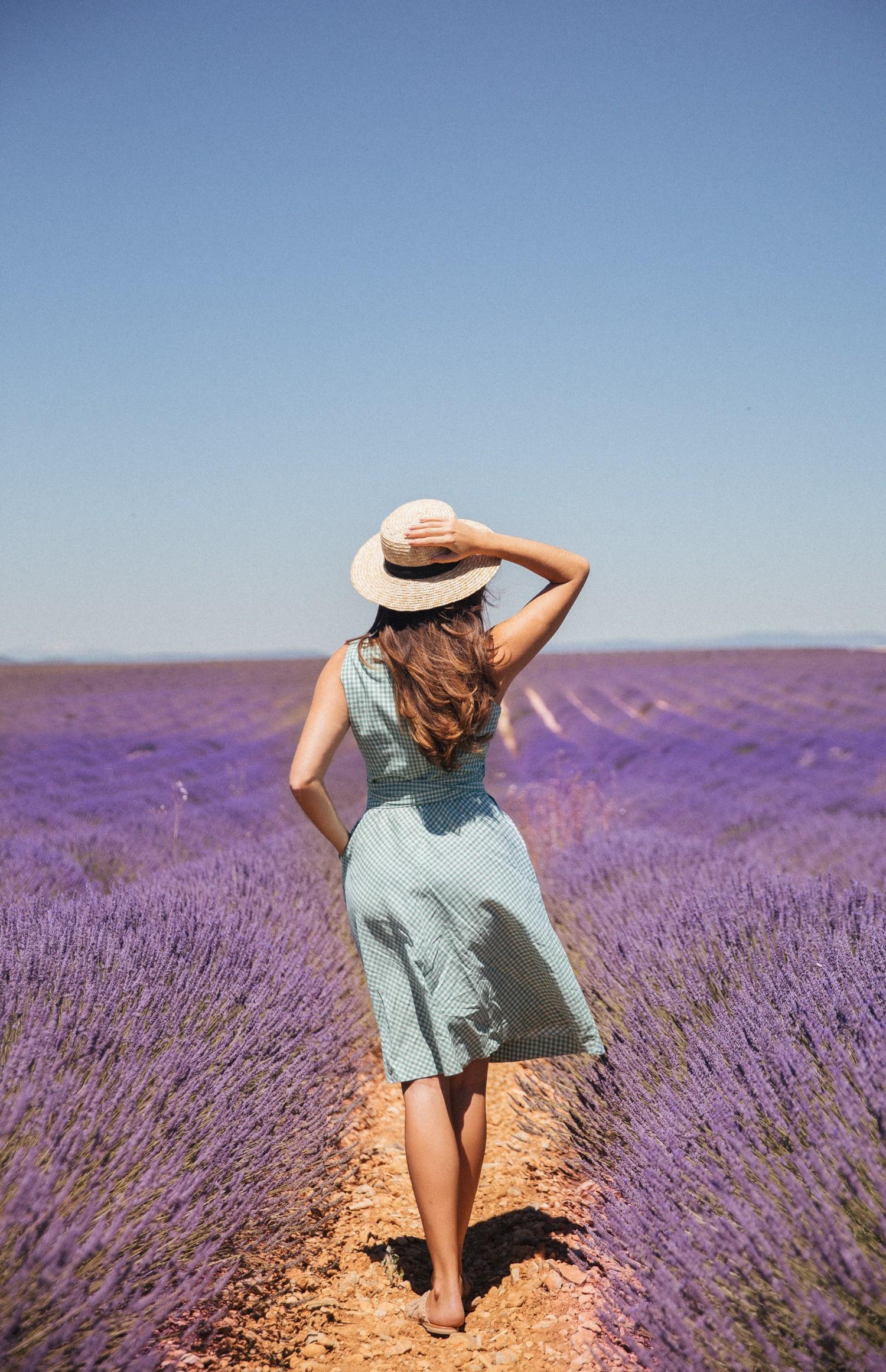 Lavender in Provence-29