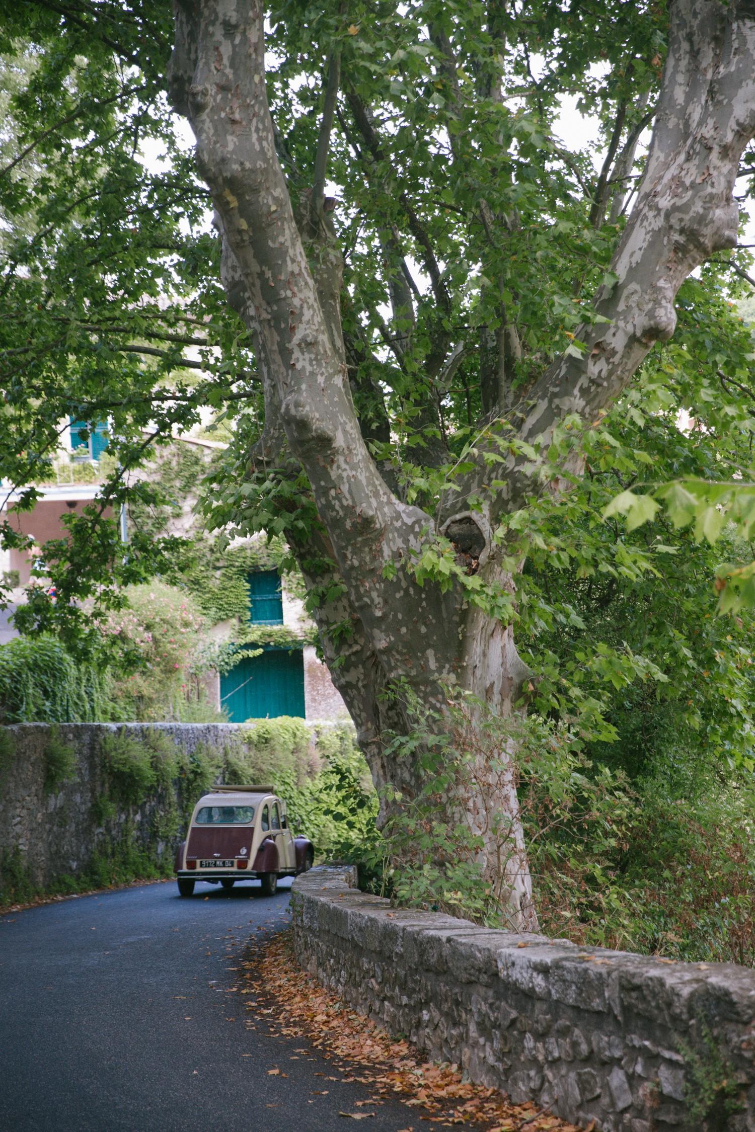 Esparron de Verdon, Provence-3
