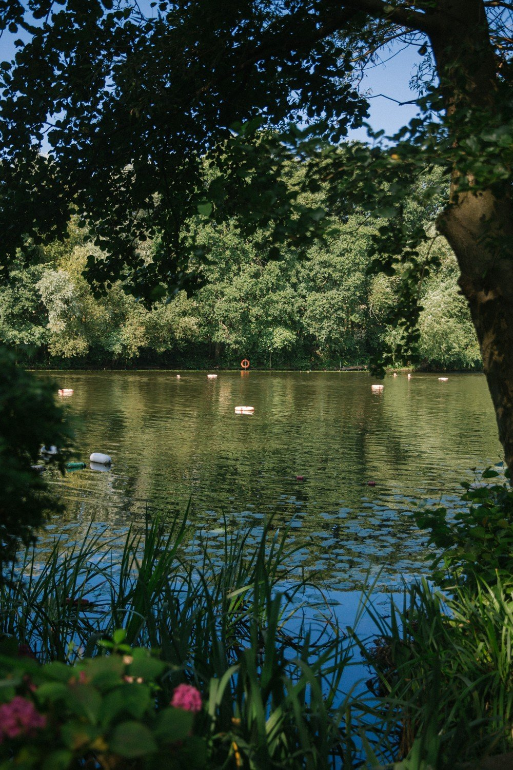 Hampstead Ladies Pond - A must visit for all Londoners