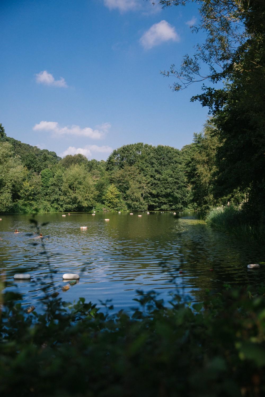 Hampstead Ladies Pond