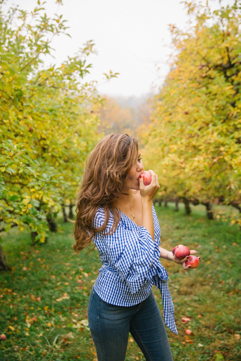 Apple picking (and eating!) in the mountains