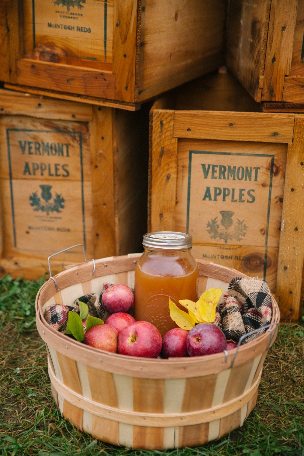 apple-picking-new-england-30