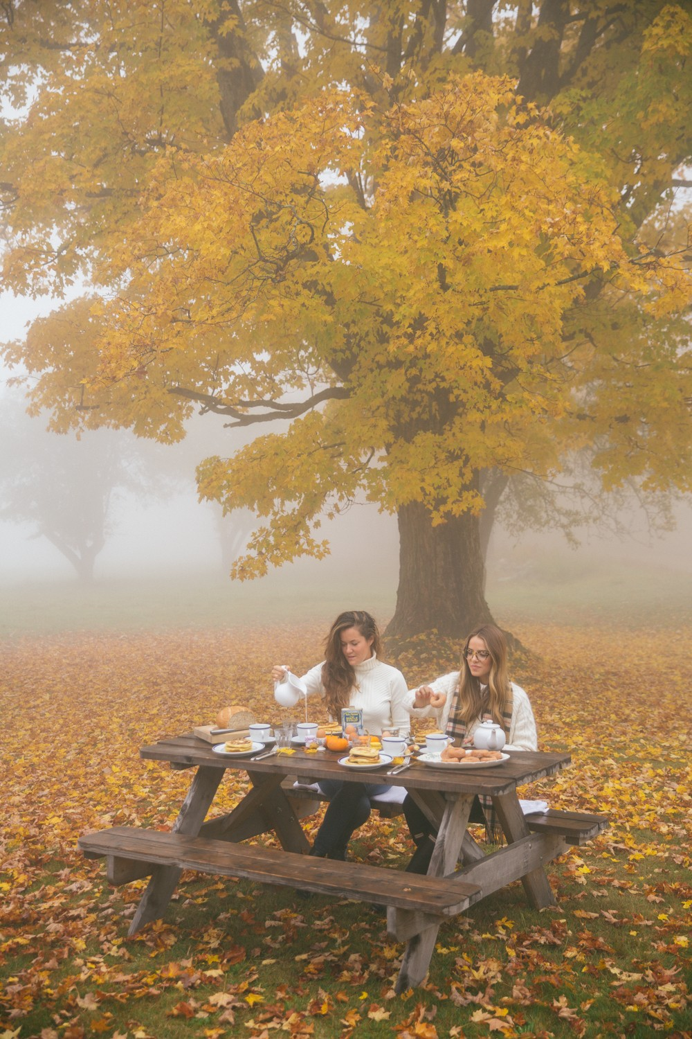 Misty breakfast picnic in the forest