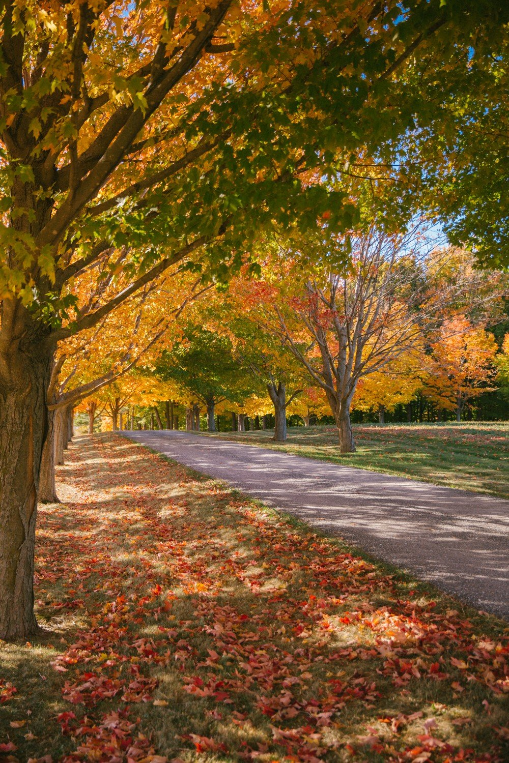 new-england-fall-17