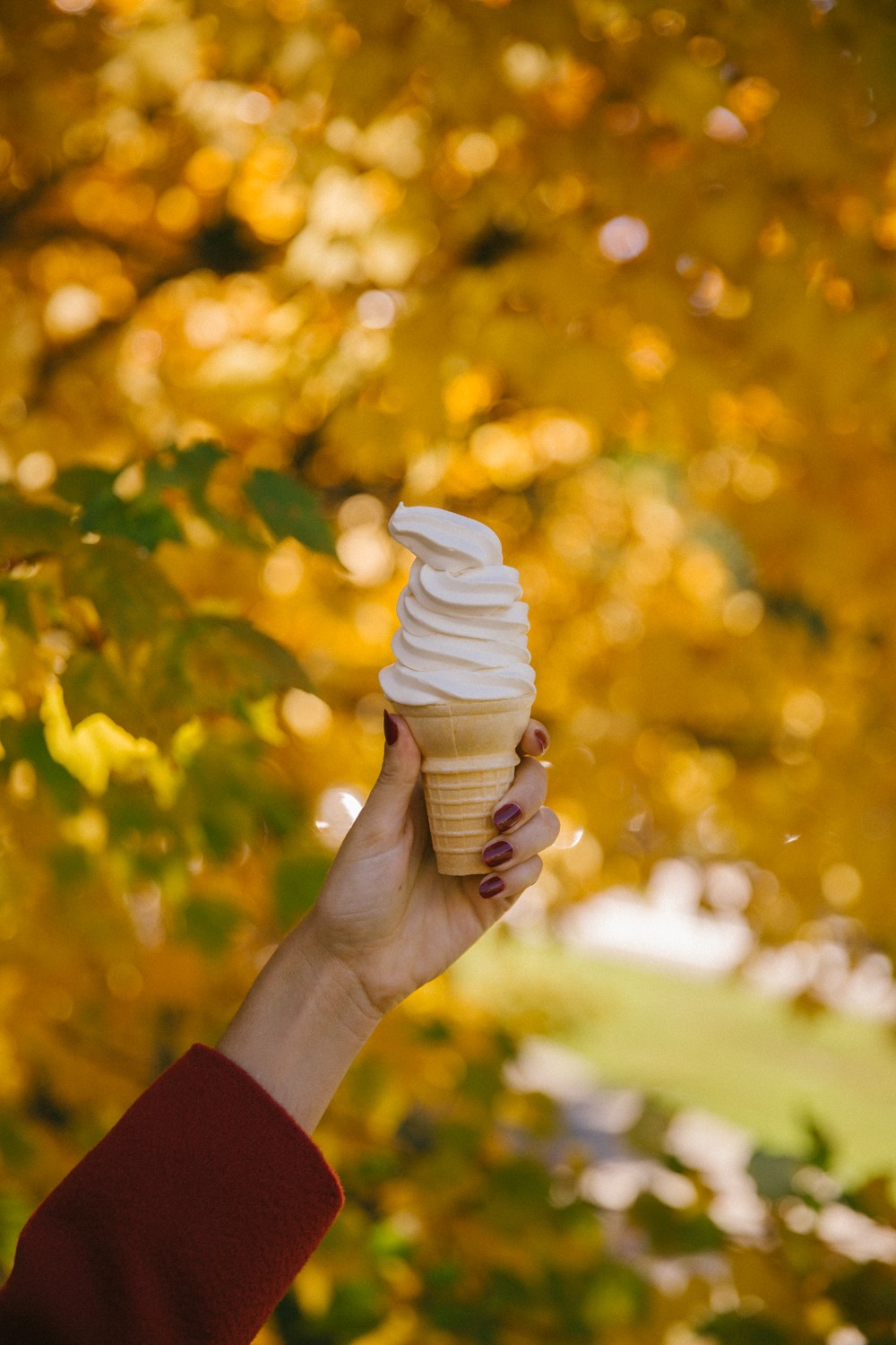 Ice-Cream in Autumn