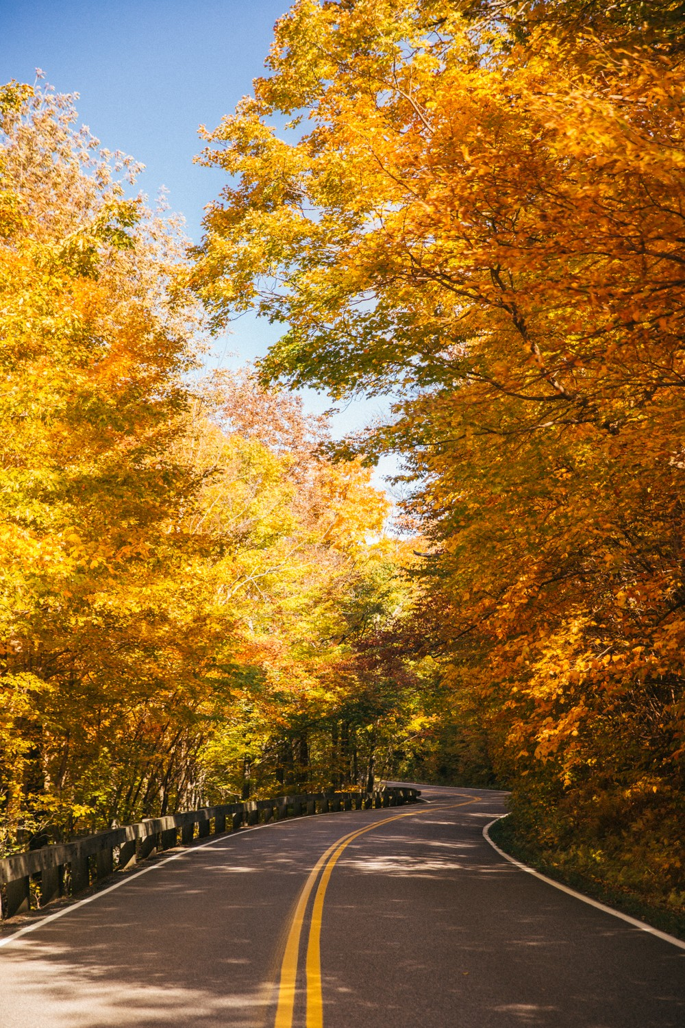 vermont-fall-10