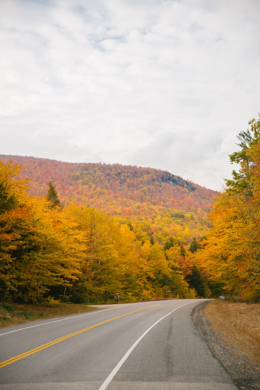 white-mountains-in-fall-26
