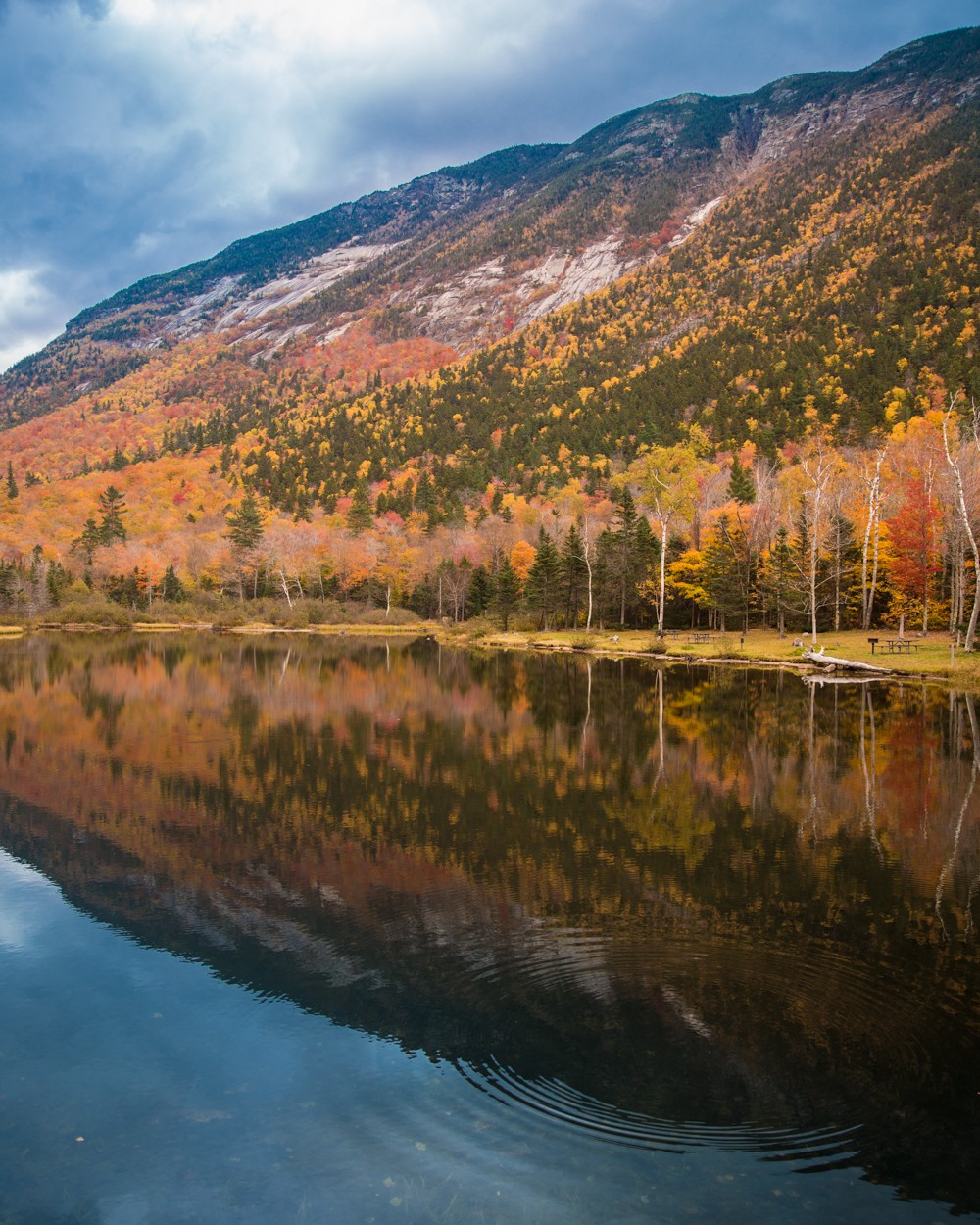 white-mountains-in-fall-29