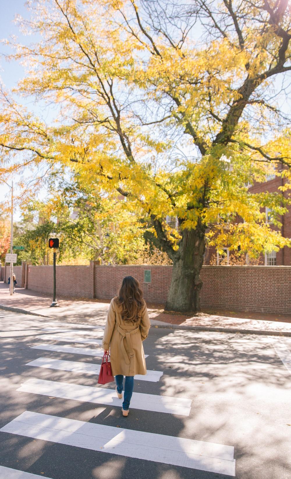 Crossing into fall