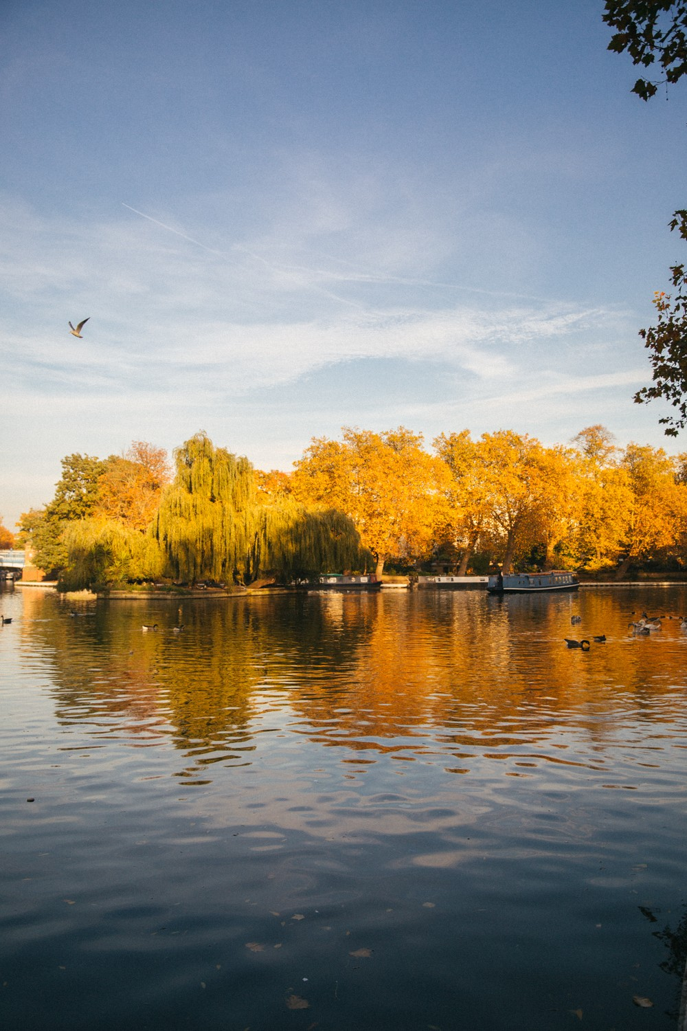 little-venice-london-16