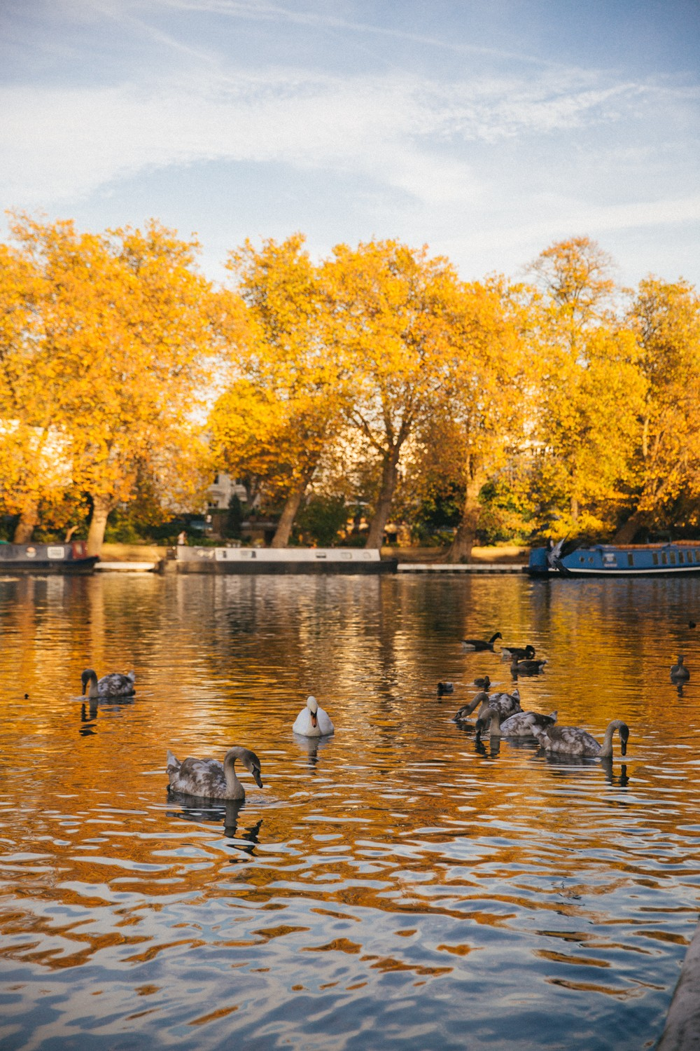 little-venice-london-17