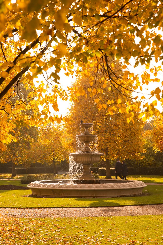 regents-park-london-15