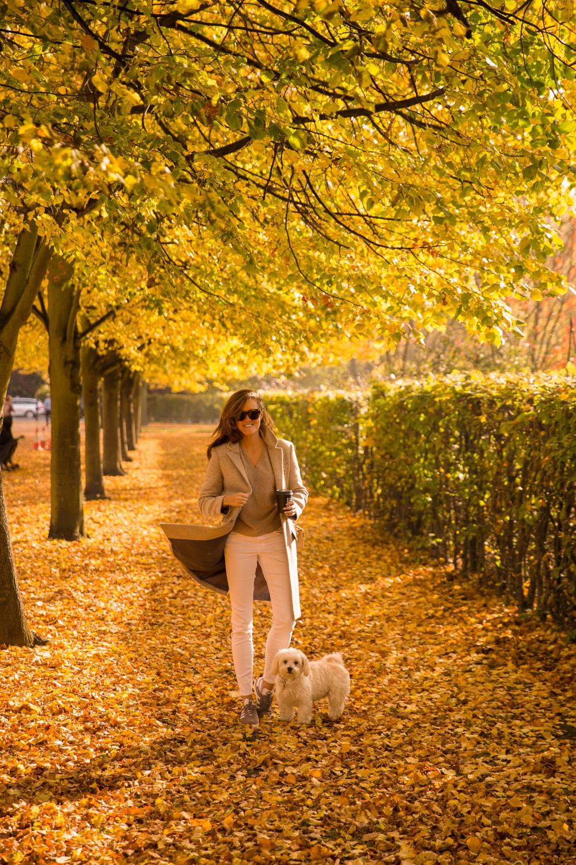 regents-park-london-18