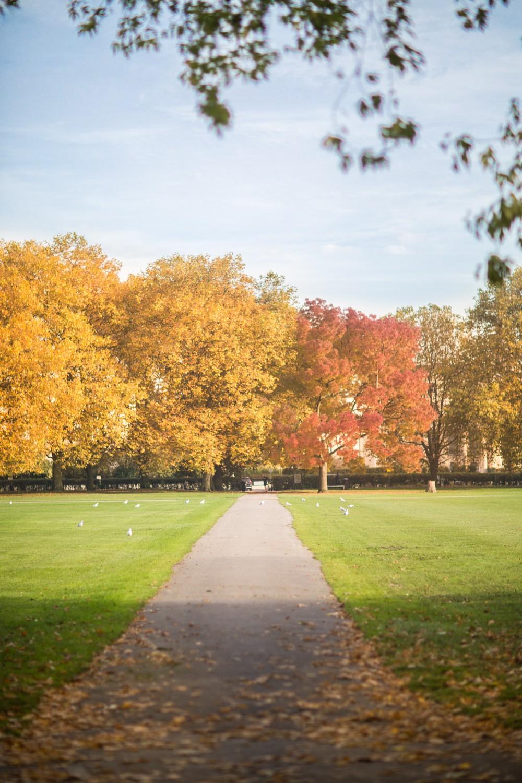 regents-park-london-5