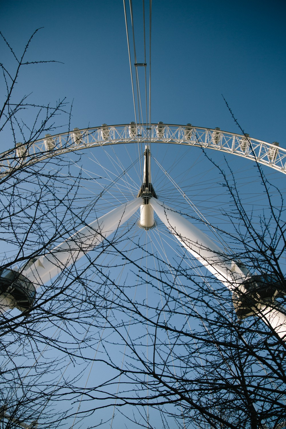 london-eye-private-tour-2