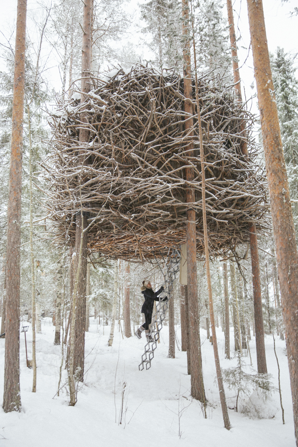 the londoner exploring the treehotel sweden. Black Bedroom Furniture Sets. Home Design Ideas